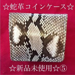 新品☆蛇革コインケース⑤(コインケース)