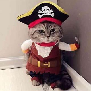 猫 洋服 ネコ 服 コスプレ衣装 ねこ 海賊 Mサイズ(猫)