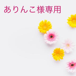 ありんこ様専用✨総レース✨人気のインポートノンパテッドブラセット (その他)