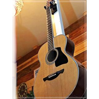 ジェームス(James)のJames アコースティックギター JF400 トップ単板(アコースティックギター)