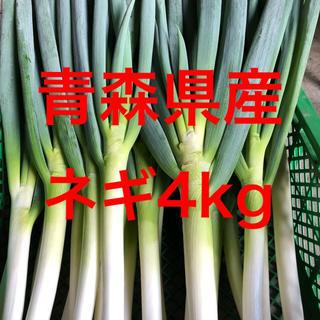 青森県産土付きネギ【白ネギ】4kg(野菜)