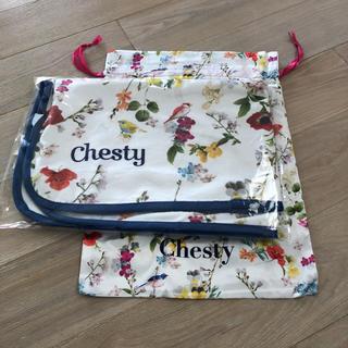 チェスティ(Chesty)のchesty♡チェスティ♡ブランケット♡(その他)