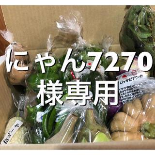 にゃん7270様専用です。(野菜)