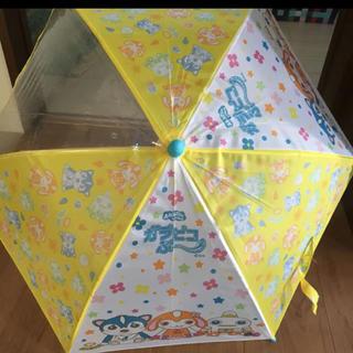 キッズ傘40センチガラピコプー(傘)