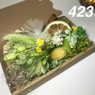 花材セット ハーバリウム花材423(プリザーブドフラワー)