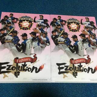 ニホンハム(日本ハム)のニッポンハム 野球 非売品 クリアファイル 二枚 美品(スポーツ選手)