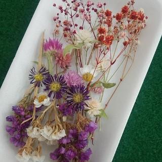 花材43 ピンク系ドライフラワー かすみ草増量 レジン封入に最適な小花のセット(ドライフラワー)