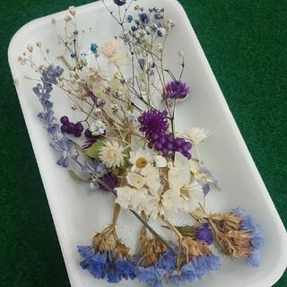 花材44 ブルー系ドライフラワー かすみ草増量 レジン封入に最適な小花のセット(ドライフラワー)