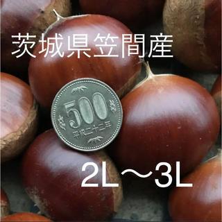 即購入OK☆茨城県笠間産 1kg(野菜)