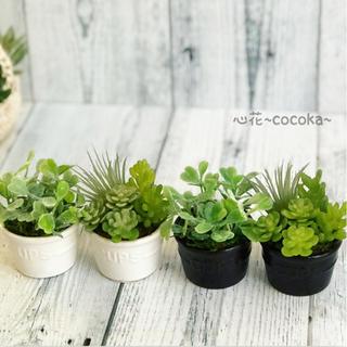 ✳NEW✳モノトーン ディップカップ(白)❁多肉植物&グリーン アレンジ(雑貨)