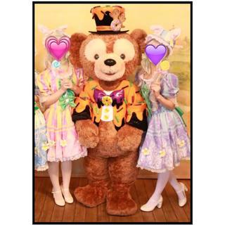 ディズニー(Disney)のディズニー 仮装 ハロウィン ペア(衣装一式)