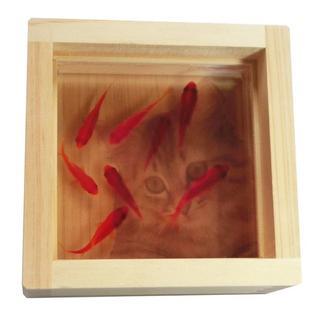 樹脂×猫×金魚 「咲/ねこ」こだわりの純日本製 【プレゼント付】(その他)