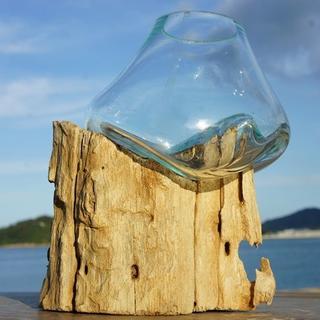 流木ガラスTN4 オブジェ 花瓶 多肉植物 金魚鉢 バリ島アート作品 テラリウム(彫刻/オブジェ)