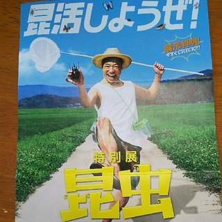 【はるる さま☆ご専用】(美術館/博物館)