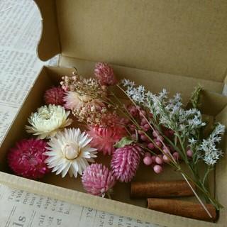 ドライフラワーの花材セット  シックピンク系3        (ドライフラワー)