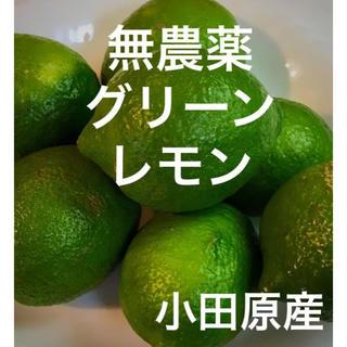 無農薬   グリーンレモン  小田原産 約2kg 産地直送  送料込み(フルーツ)