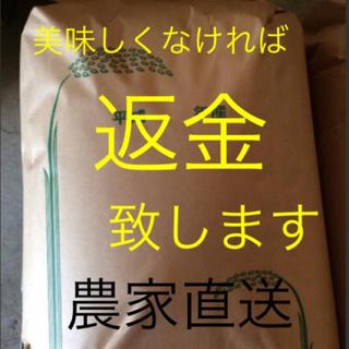 渡部家の新米こしひかり 玄米 産地直送  農家のお米(米/穀物)