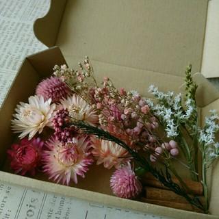 ドライフラワーの花材セット  シックピンク系5(ドライフラワー)