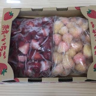 奈良県産 古都華 淡雪 紅白 冷凍イチゴset(フルーツ)