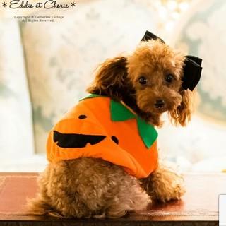 犬服 ドッグウェア スモック カボチャ ハロウィン キャサリンコテージ ランタン