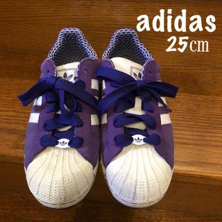 アディダス(adidas)の【アディダス】スニーカー(25㎝)パープル(スニーカー)