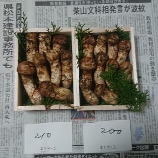 信州産 松茸 410g(野菜)