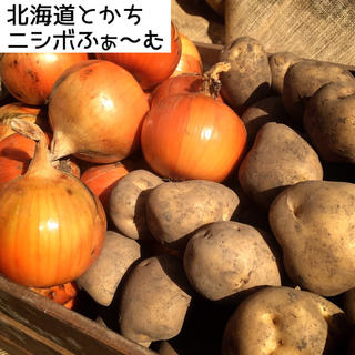 北海道とかちニシボふぁ〜む じゃがたまセット(野菜)