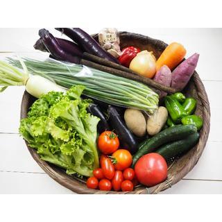 好きなものが選べる♪熊本県産お野菜オーダー注文ページ!(野菜)