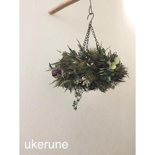 グレビレアと秋色紫陽花のシャビーシックなフライングリース ドライフラワー(ドライフラワー)