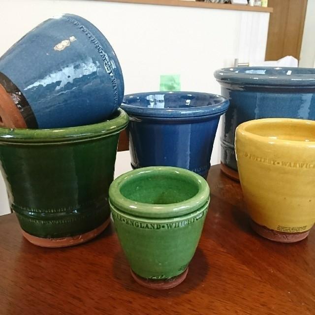 !五合目様専用!ウィッチフォード 植木鉢 未使用 かわいい鉢 おしゃれな鉢 ハンドメイドのフラワー/ガーデン(プランター)の商品写真