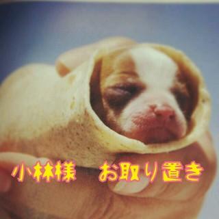 ケイビーシマー(KBShimmer)のマニキュア♡(その他)