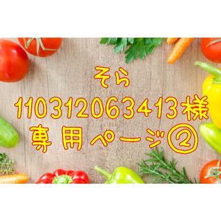 ★そら110312063413様専用ページ②(野菜)