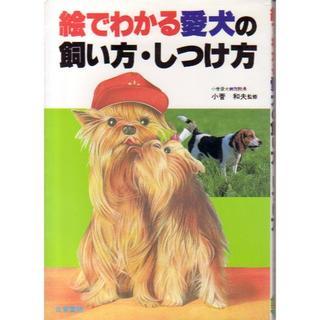 絵でわかる愛犬の飼い方・しつけ方(単行本)(趣味/スポーツ/実用)