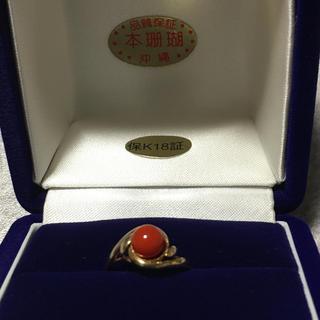 新品 沖縄 本珊瑚 リング(リング(指輪))