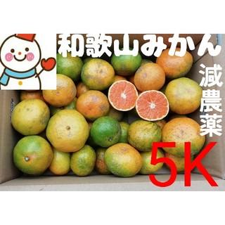 コールラビ様専用❤️みかん差額分(フルーツ)