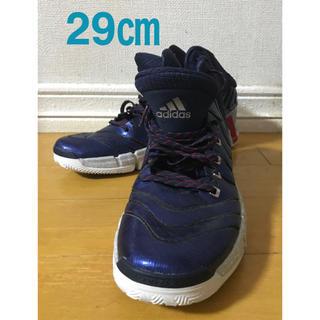 アディダス(adidas)のアディダス バスケットシューズ 29㎝(バスケットボール)
