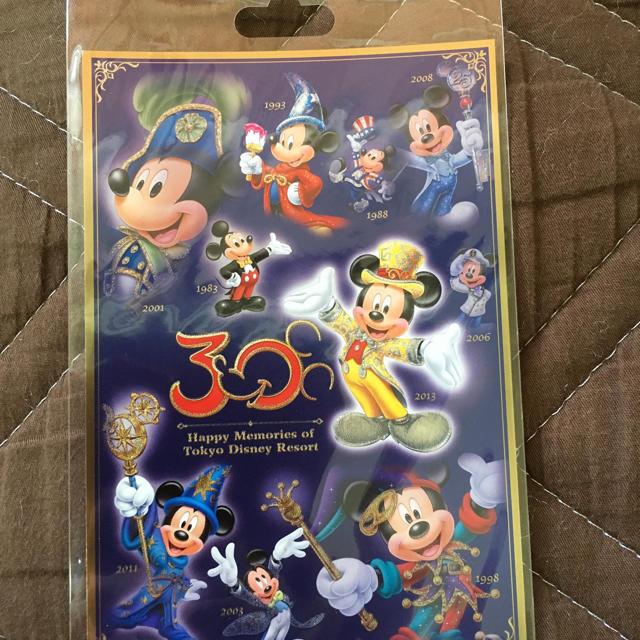 Disney(ディズニー)のディズニー30周年記念グッズ エンタメ/ホビーのおもちゃ/ぬいぐるみ(キャラクターグッズ)の商品写真
