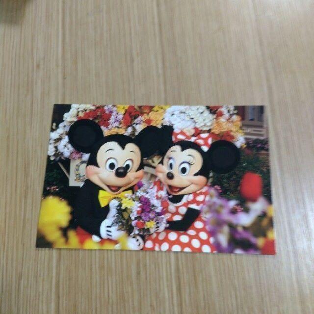 Disney(ディズニー)のディズニーワールド ミッキー&ミニー ポストカード エンタメ/ホビーのコレクション(その他)の商品写真