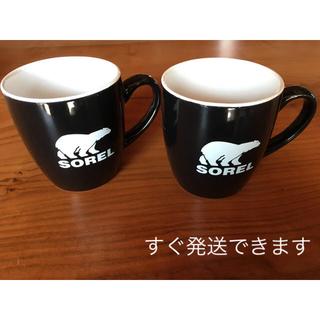 ソレル(SOREL)のSORELマグカップセット(グラス/カップ)