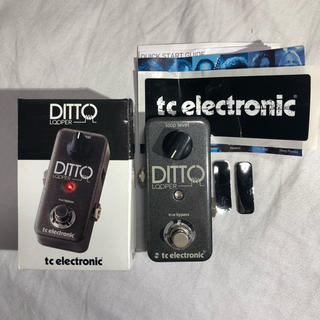 tc electronic DITTO LOOPER ルーパー(エフェクター)
