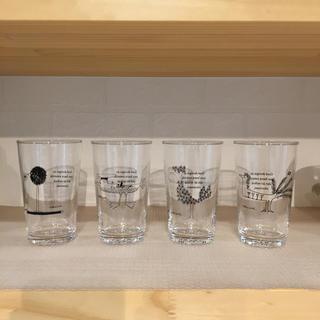 アクタス(ACTUS)のACTUS(アクタス)× Olle Eksell(オーレ・エクセル)コラボグラス(グラス/カップ)
