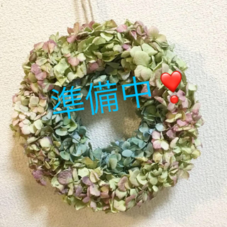 秋色紫陽花のドライリース、ライムピンク&ブルーグリーン(ドライフラワー)