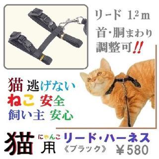猫逃げない・猫安全!安心お散歩に★猫用リード・ハーネスセット(ブラック)