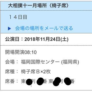 大相撲九州場所 14日目 11/24 イス席 椅子席Bペアチケット(相撲/武道)