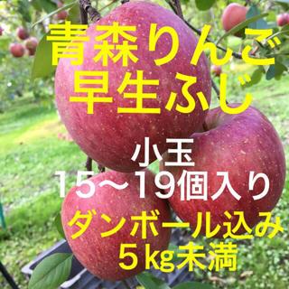 青森県産 りんご 弘前ふじ 小玉 食べやすい