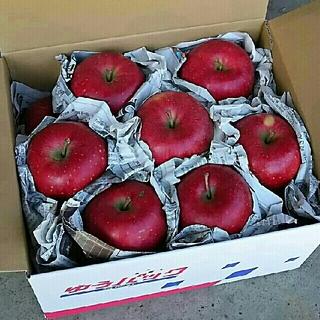 りんご(秋陽) 家庭用訳あり 約5㎏ 15玉