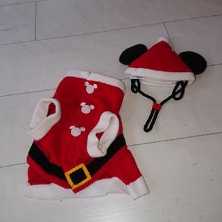 Disney - 犬 服 クリスマス