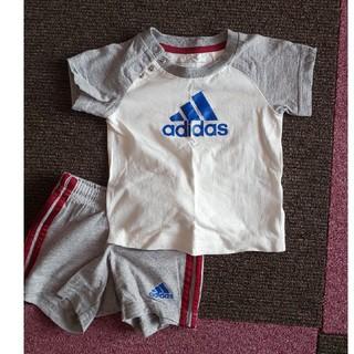 アディダス(adidas)のベビー服  アディダス  size70(Tシャツ)
