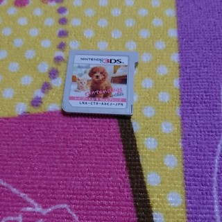 ニンテンドー3DS - 3DS nintendogs