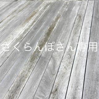 さくらんぼさん専用(参考書)
